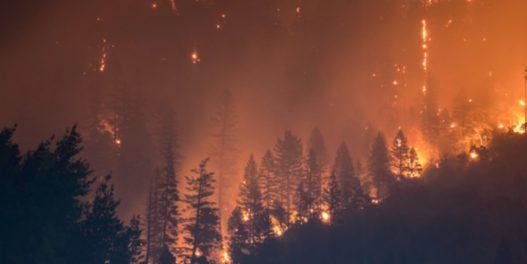 Rekordne emisije zabeležene nakon junskih požara u Sibiru