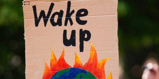 Ako želite da se borite protiv globalnog zagrevanja razmišljajte o sistemu, ne o stvarima koje koristite