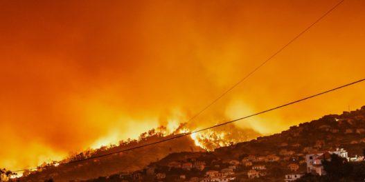 Kalifornija u plamenu:  Tramp proglasio stanje velike katastrofe