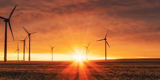 Ogroman pad potrošnje nafte i uglja, obnovljivi izvori otporni na krizu