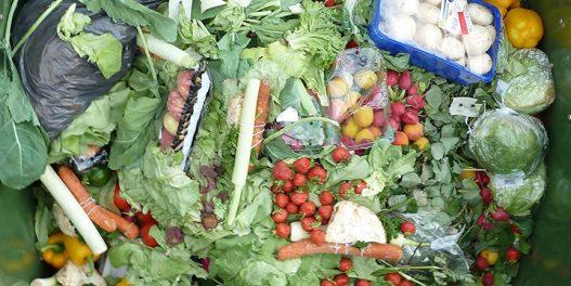 Rešenja za prehrambeni otpad pomažu i društvu i životnoj sredini