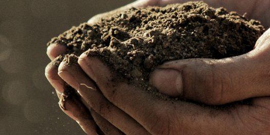 Uloga i značaj zemljišta u borbi protiv klimatskih promena