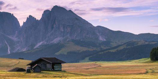 U planinskim regionima zabeležen porast gladi zbog gubitka biodiverziteta i klimatskih promena