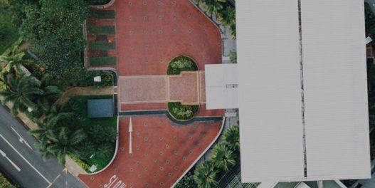 Google pomoću veštačke inteligencije pomaže gradovima da odaberu lokacije za sadnju drveća