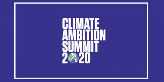 Virtuelni samit UN o klimi: Potrebno je povećati napore u cilju ispunjenja Pariskog sporazuma