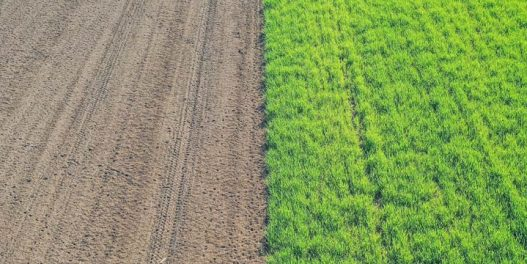 Kako tehnologija koju je razvila NASA donosi doprinosi razvoju regenerativne poljoprivrede?