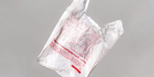 Šta je biorazgradiva, a šta kompostabilna plastika?