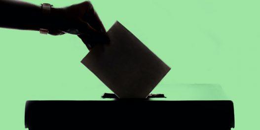 Da li raste uloga zelenih partija i pokreta pred nastupajuće izbore u Srbiji?