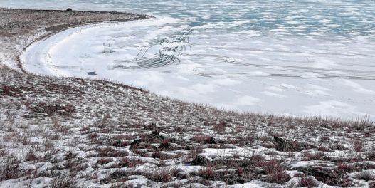 Zašto toplotni talasi u Sibiru tako strašno plaše klimatologe?