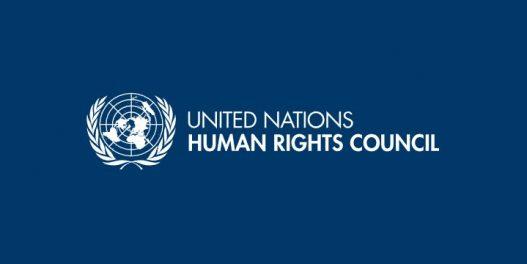 UN: Zdrava, čista i održiva životna sredina je ljudsko pravo