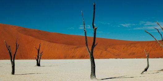 Šta će biti sa klimom posle 2100. godine?